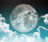 wolf in the moon