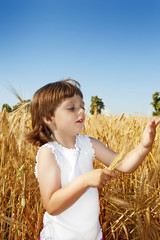 little girl ( 3 years old) on a grain field -  farming concept