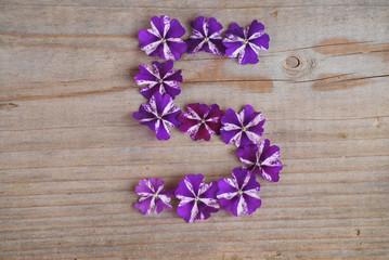 5 en fleurs