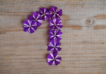 1 en fleurs