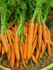 Etal de carottes