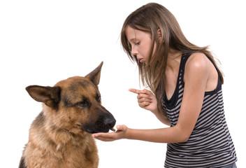 jeune adolescente qui donne un biscuit à son chien