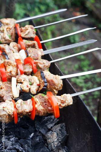 kebab grilled with vegetables on metal skewers