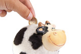 Cow moneybox poster