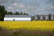 Metallic Grain Storage Units, Manitoba, Canada