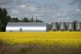 Metallic Grain Storage Units, Manitoba, Canada