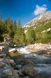 Roztoka river in polish tatra mountains - 24289426