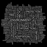 ENVIRONMENT. Wordcloud illustration. poster