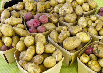Potatoes at Farmers Market