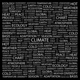 CLIMATE. Wordcloud vector illustration. poster