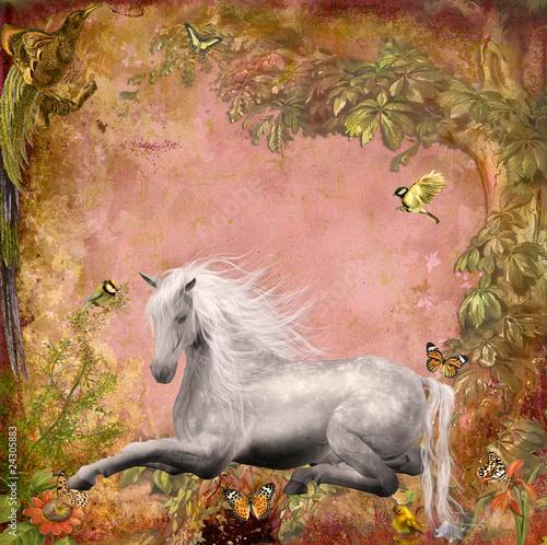 Fototapeten,pferd,grau,idylle,ruhe