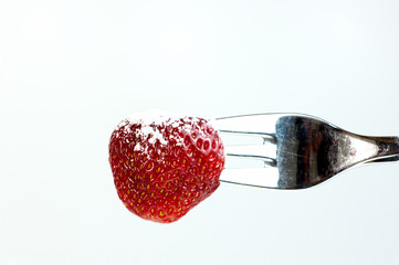 Erdbeere eingezuckert