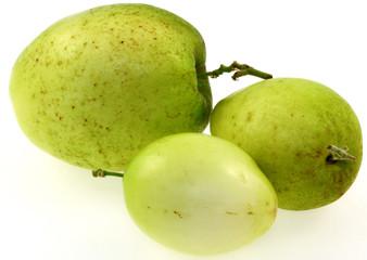 ziziphus jujuba, jujubes, fruits des tropiques, fond blanc