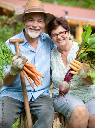 Senior couple holds  harvested vegetables