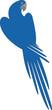 Parrot color 04