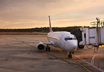 Plane at Melbourne Airport Terminal at Sunrise