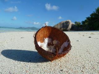 Kokosnuss Source d'Argent