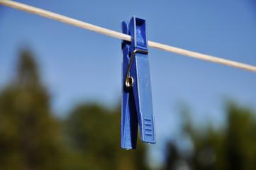 Blue clothes peg