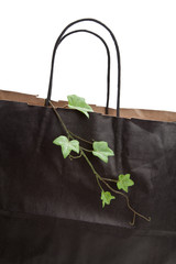 Black paper shopping bag and plant