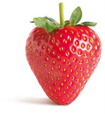 graphic side view of a tasty strawberry on a white background