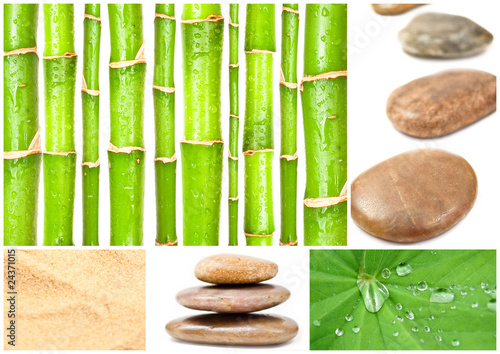 In de dag Bamboo Collage Spa