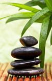 Massage stones and bamboo leaves