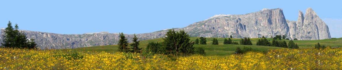 Panorama Altipiano Sciliar Alpe di Siusi Dolomiti