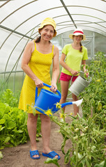 women watering  with  watering pot