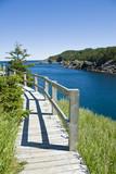 Boardwalk at La Manche Provincial Park, Newfoundland poster