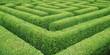 Irrgarten  Hedge Maze - 24397096