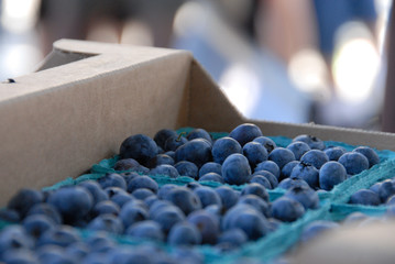 Blueberries at the Saturday Market