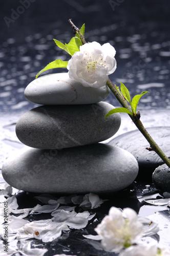 ulozone-kamienie-z-kroplami-kwiatow-i-wody