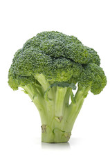 fresh broccoli sheaf