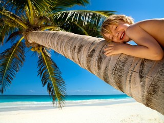 Young boy relaxing on a palm tree in a tropical beach