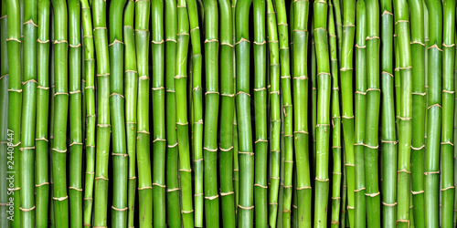 Fototapeten,bambus,abstrakt,asien,hintergrund