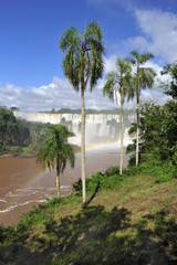 Landscape of Iguazu waterfalls in Argentina