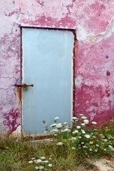 Aged wall door wild carrot flowers Formentera