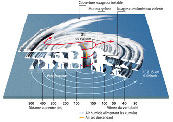 Cyclones, ouragans et typhons - Structure d'un cyclone