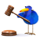 3d Blue bird with gavel