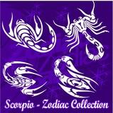 Scorpio.Tribal Zodiac. poster