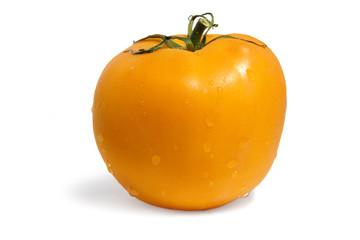 yellow tomato on white background