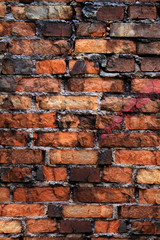 Wall  brick  clay