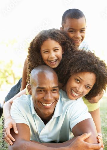 stepfamily essays