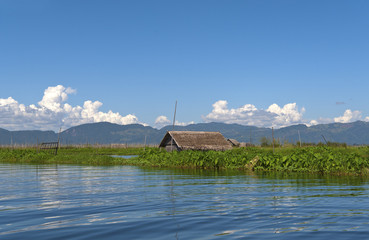 Floating Gardens on the Inle lake in Burma (Myanmar).