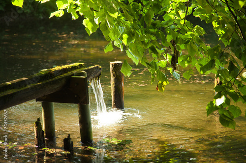 canvas print picture Teich