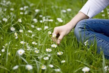 A young woman sitting on the grass, picking a daisy