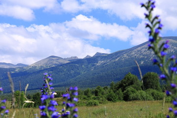 color of altay mountain