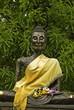 buddha in temple at bangkok