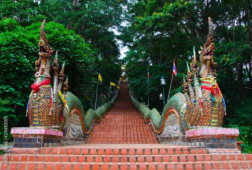 Naga stairs of Wat Doi Suthep temple - 24492071