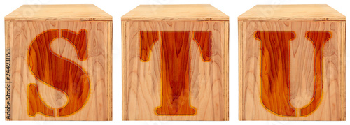 Wood Engraved Alphabet Blocks S T U